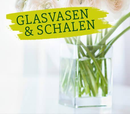 SURIG - Glasvasen & Schalen reinigen