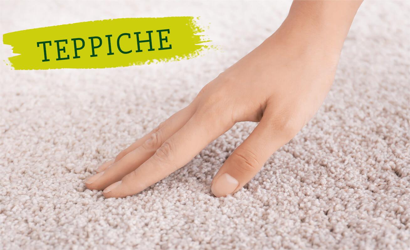 SURIG - Teppiche reinigen