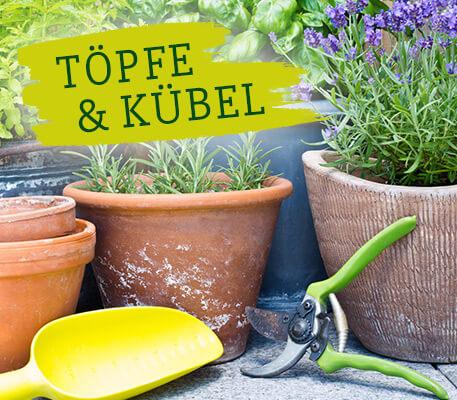 SURIG - Töpfe & Kübel reinigen